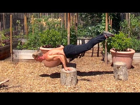Kung Fu PUSH UPS - Awesome Burn!