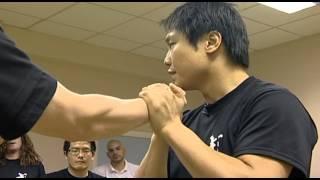 Wing Chun - Yumruk karşılama - Leo Au Yeung