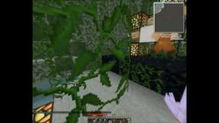 [Coop] Minecraft Spellbound Caves. Часть 1 -