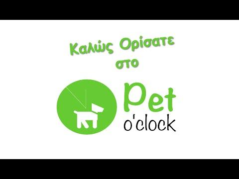 Τροφές και αξεσουάρ για σκύλο γάτα και κατοικίδια - Pet O' Clock Eshop