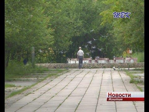 Следующим объектом для программы «Парки малых городов» искитимцы выбрали сквер героев трудовой славы