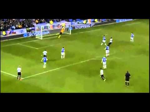 Yohan Cabaye great  goal vs everton