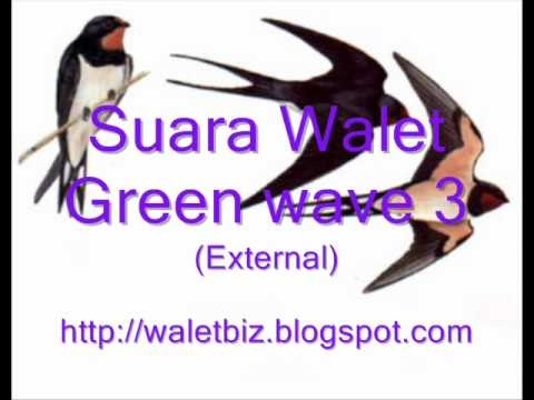 Walet Green Wave 3.wmv