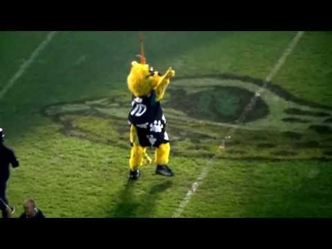 Jaxson de Ville (Jacksonville Jaguars Mascot) makes a dramatic entrance at Wembley 2013
