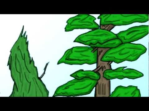 Porkface: The Origin Pt 1 - The Birth Camera animation test 1