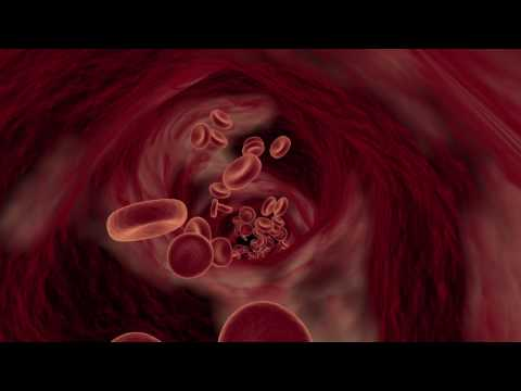 Mark Stewart Phillips 3D Animation Blood Cells