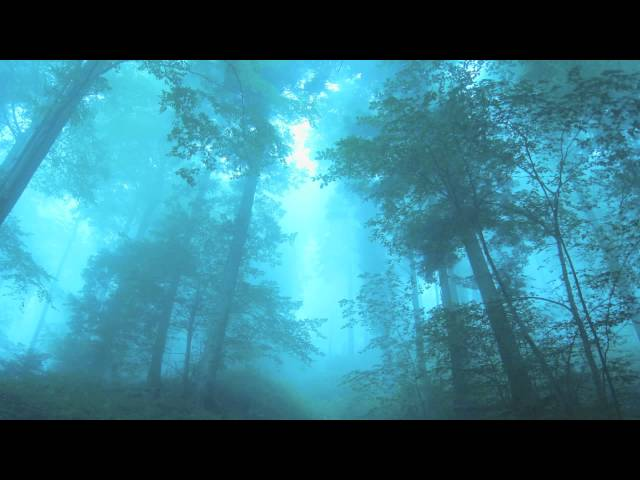 Emily Underhill - Dreamcatcher (JacM Remix)