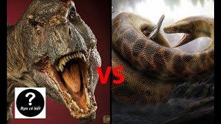 T rex vs Titanoboa, con nào sẽ thắng #18 || Bạn Có Biết?