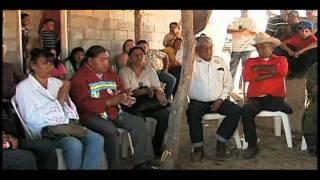 Identidad Indígena Y Democracia En México (versión
