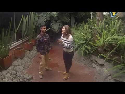 Greeicy Rendón - Entrevista con Oxígeno Bogotá