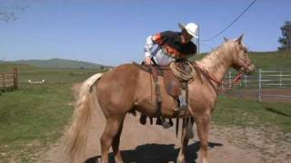 How To Stop A Horse From Walking Off When You Mount Poor