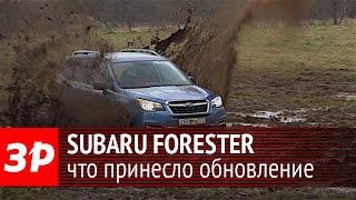 Subaru Forester 2016: что обновили?. Видео тесты За Рулем.