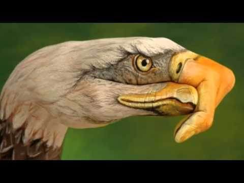 Eagles Life In The Fast Lane -HD