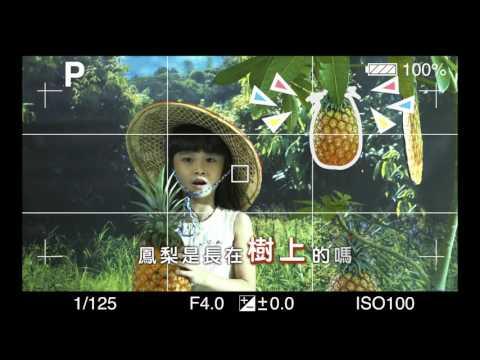 高雄一日農夫體驗趣-鳳梨篇(影片長度:30秒)