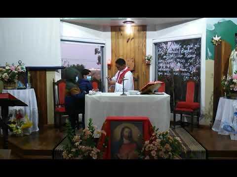 Santa Missa | 05.06.2021 | Sábado | Padre Francisco de Assis | ANSPAZ