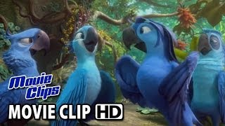 Rio 2 Movie CLIP Beautiful Creatures (2014) HD