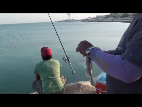 Fishing in Al-Khobar Saudi Arabia