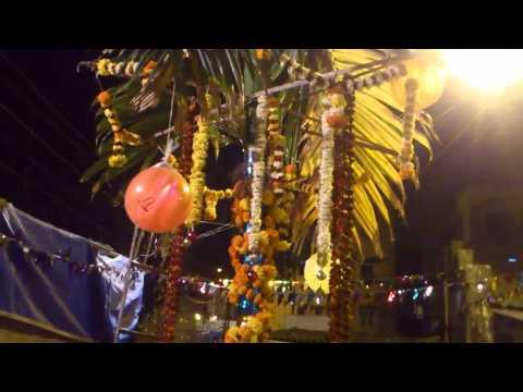 Decorated Holi Festival Tree - Mumbai