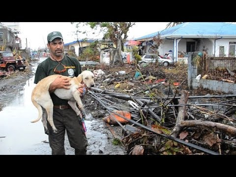HSI: Heartwarming Rescue Stories from the Philippines - Silver Telly Award Winner