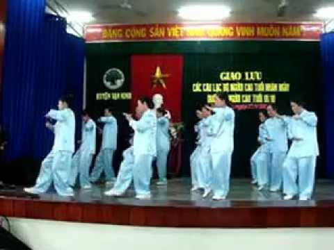 Thai cuc quyen 24 thuc Van Binh.MPG