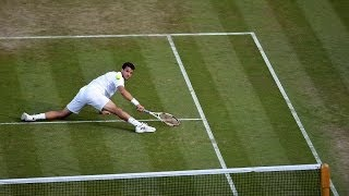 HSBC Play Of The Day: Grigor Dimitrov superb reactions - Wimbledon 2014