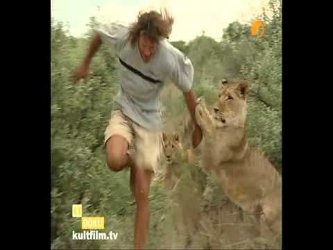 Lion fight with man - photo#7