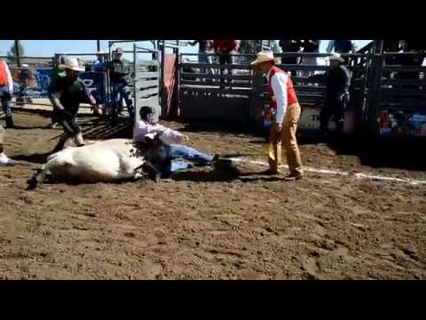 2014 CGRA Rodeo Chute Dogging