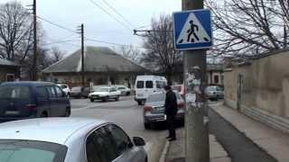 Fărădelegil non-stop la zebra de la Prometeu