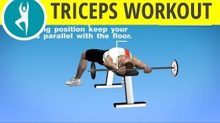 Triceps Pushdown With Barbell On A Bench: Arms Workout For