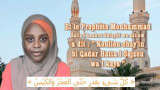 Toute chose est selon une Destinée * Rappels des Petits Musulmans
