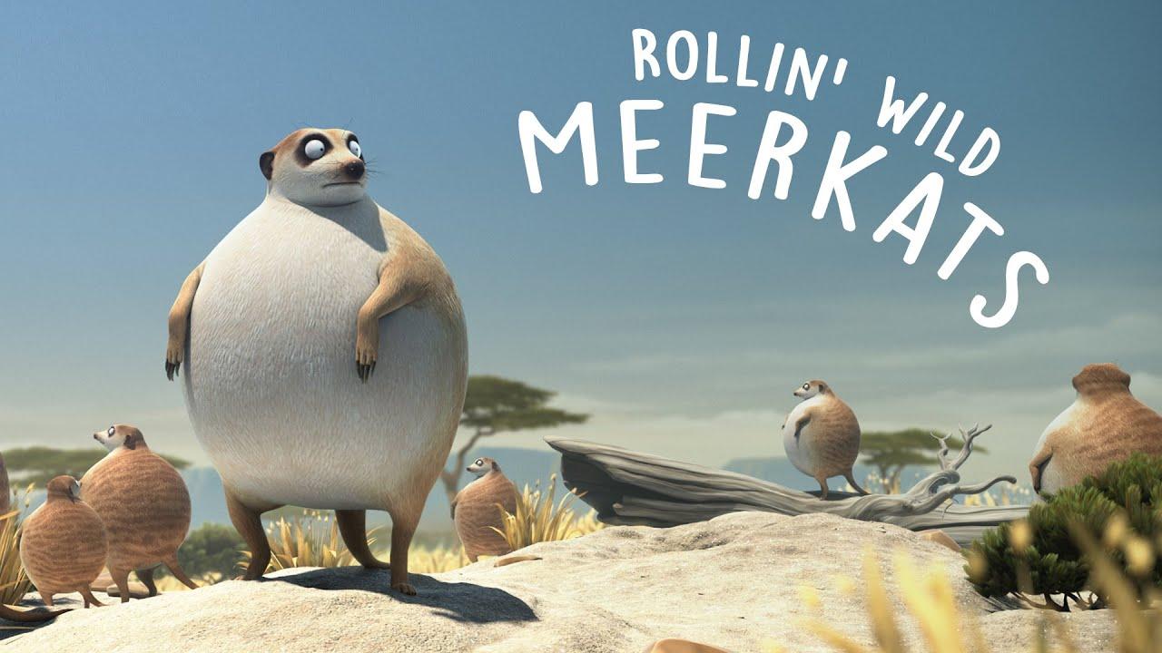 【ROLLIN' SAFARI - 'Meerkats' 】【Yao】