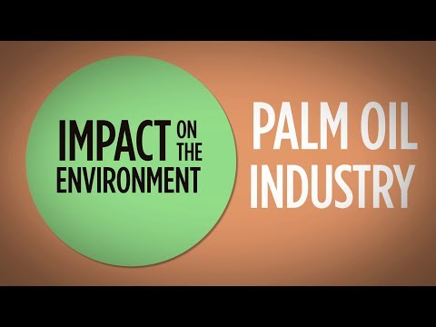 Palm Oil - Environment & Deforestation