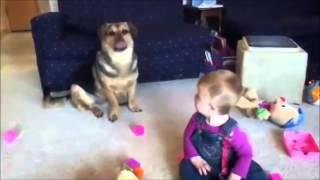 Bebe se muere de risa mientras el perro come burbujas