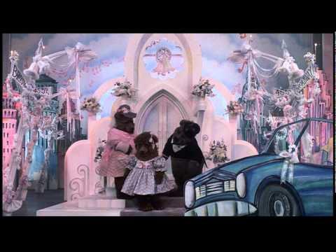 """""""Alguien Viene a Casarse"""". Los Muppets en Nueva York (1984). Doblaje mexicano."""