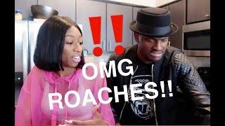 GOT ROACHES?? REACTION VIDEO!