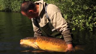 UK's Best looking 50lber??
