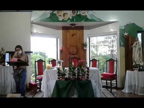 Santa Missa | 01.12.2020 | Terça-feira | Padre Francisco de Assis | ANSPAZ