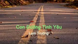 Con đường tình yêu (Lam Trường)
