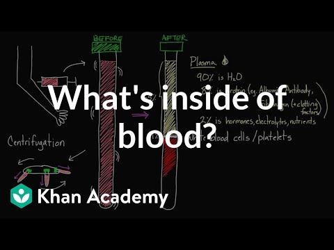 What's Inside of Blood?