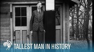 "Tallest Man In History Robert Wadlow 8ft11"" [Full"
