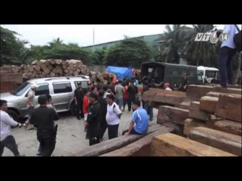 VTC14_Tiền Giang: Phá trường gà lớn núp bóng xưởng gỗ_02.06.2013