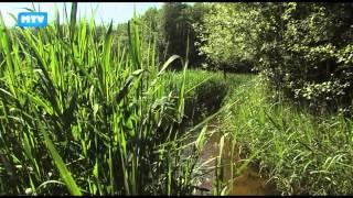 Zoektocht naar het verleden afl.3. - 639 - ZNHV #3: Watermolen