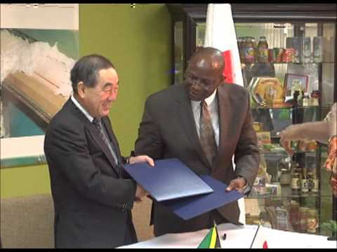 Japan boosts Jamaica's Sea Island Cotton industry with US$106,000 grant - OJR FEB 18 2014