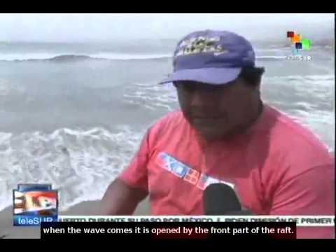 Peru: Climate change slowly extinguishing 'caña de totora'