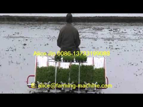 High Performance Paddy Transplanter Machine For Small Farm. Enquire Now!