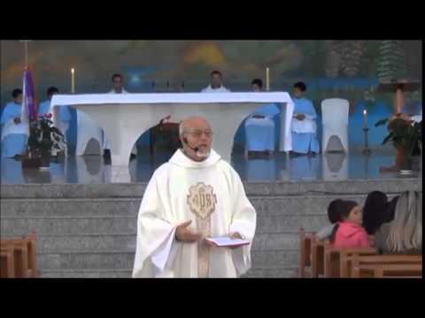 Homilia Padre Sometti 31.05.2015