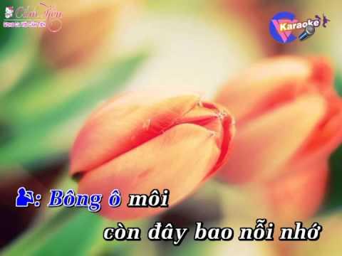 Karaoke Bông Ô Môi _ Song ca với Cẩm Tiên