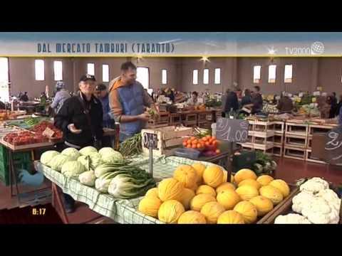 Taranto, nuovo allevamento di cozze e ostriche