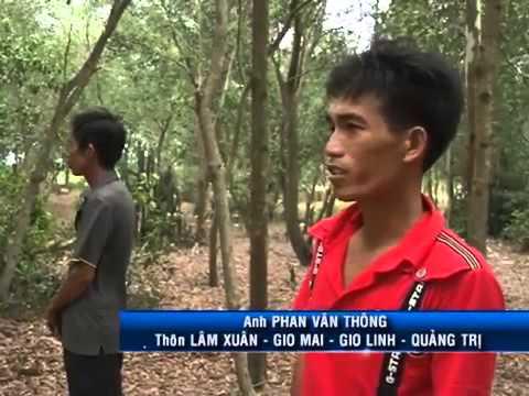 Phóng sự điều tra động trời của VTV về 'nhà ngoại cảm'   VTC News
