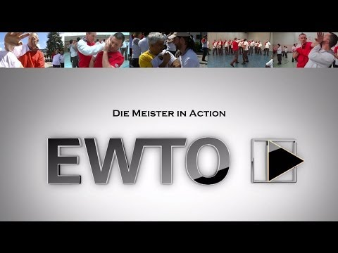 Meister der EWTO in Action